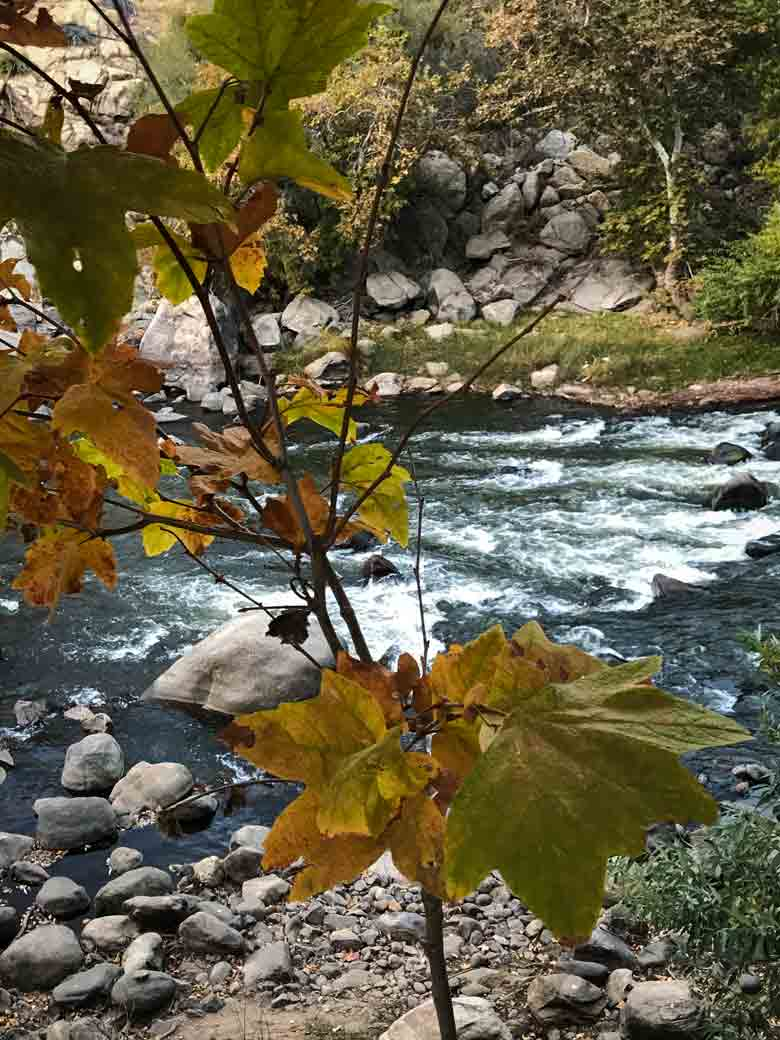 With a Kern River raft rental, run several sections of the Kern, depending on your skill-level.